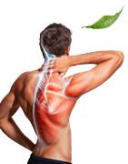Anti-inflammatoire